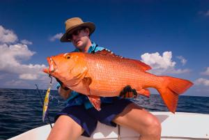maldives, indian ocean, fishing, landascapes