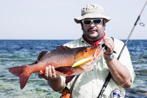 A orilla del Mar Rojo