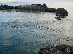 7 mejores lugares donde pescar la lubina a spinning en aguas paradas