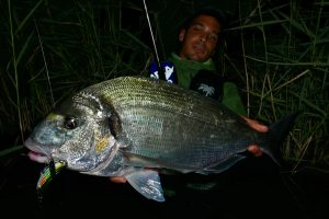 Rockfishing, ajing, light spinning, hard rock, técnica y cañas